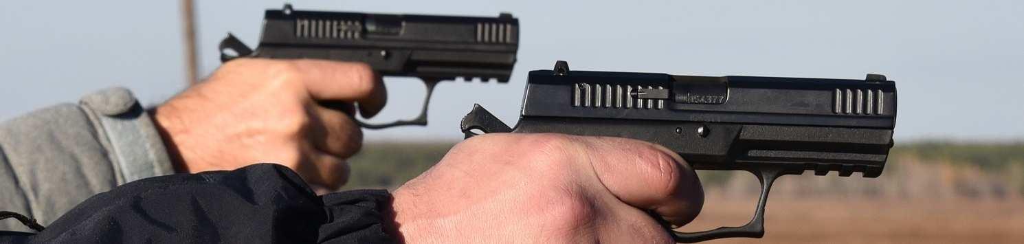 gun legalization